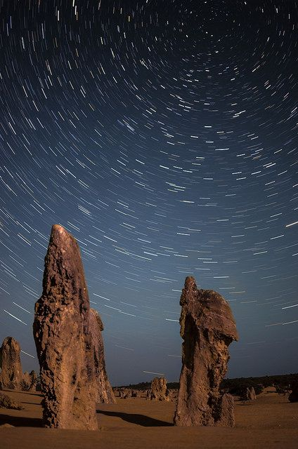 Pinnacles Star Trails - Western Australia | by inefekt69