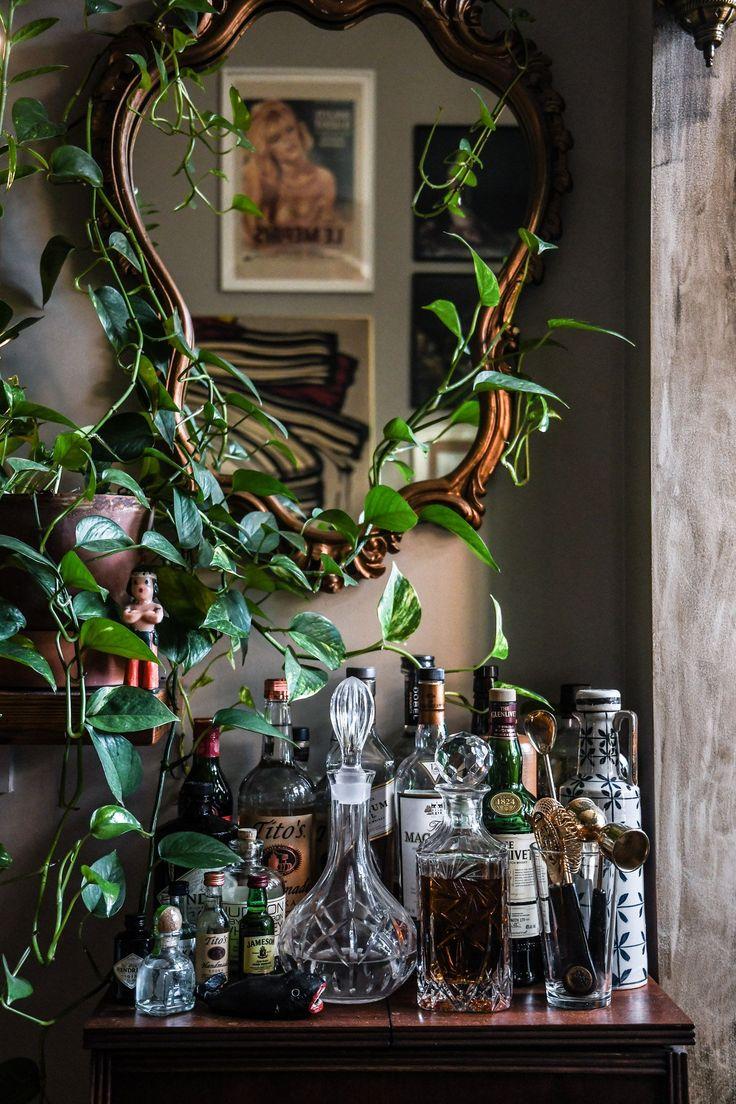 62 Best Images On Pinterest Green Plants House Plants  # Muebles Moya Loja