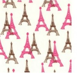 Cotton Poplin Print - Paris