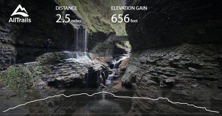 Watkins Glen State Park is the most famous of the Finger Lakes State Parks, with a reputation for leaving visitors spellbound. Within two miles, the glen's stream descends 400 feet past 200-foot cliffs, generating 19 waterfalls along its course. The gorge path winds over and under waterfalls and through the spray of Cavern Cascade. Rim trails overlook the gorge. Campers and day-visitors can enjoy the Olympic-size pool, scheduled summer tours through the gorge, tent and trailer campsites, ...
