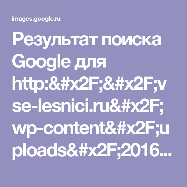 Результат поиска Google для http://vse-lesnici.ru/wp-content/uploads/2016/07/zhenskie-strizhki-dlja-kruglogo-lica_3.jpg