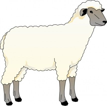Sheep Illustration - Cliparts.co