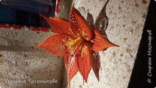 Это цветы для будущей картины в технике петельчатый квиллинг или квиллинг на гребне. Для изготовления потребуется: полосочки бумаги шириной 3 мм для самого цветка, бумага шириной 1.5 мм для сердцевины, клей пва, гребень, крашеная манка,горячий клей для сборки цветка, терпение и хорошее настроение. фото 10