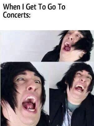 If I was allowed to go to concerts is what it should say. But you I still love Destery's face!