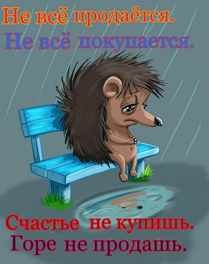 Митрофанов Владимир