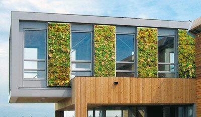 Vertigreen: Fassadenbegrünung als vorgehängte, hinterlüftete Fassade