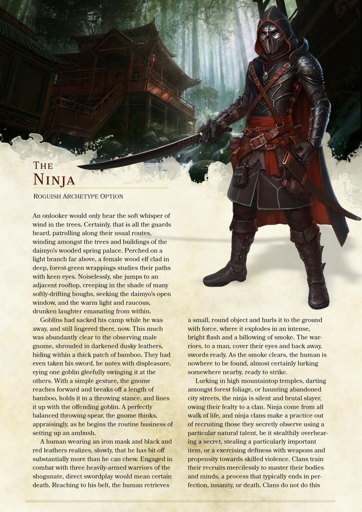 DnD 5e Homebrew — Ninja Rogue by The_Singular_Anyone