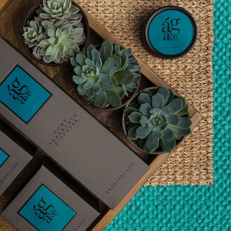 Archipelago Botanicals | Patrick & Company | TM 2927 | Candles and Fragrances