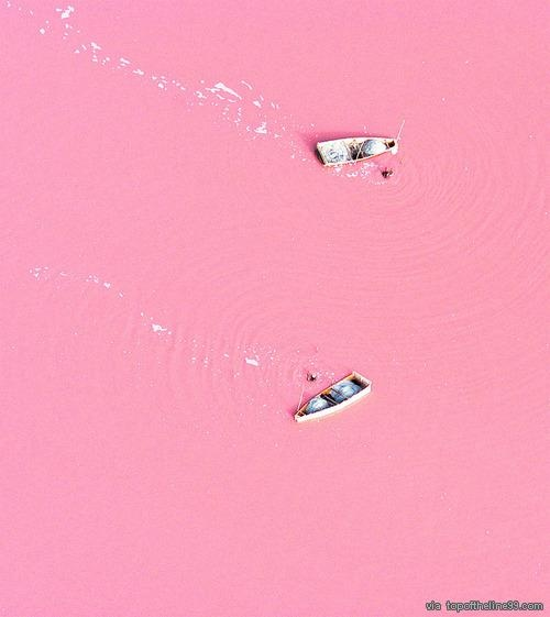 "Lake Retba in Senegal  The bizarre colour is caused by high levels of salt - with some areas containing up to 40% of the condiment.  Michael Danson, an expert in extremophile bacteria from Bath University, said: ""The strawberry colour is produced by salt-loving organism Dunaliella salina.  ""They produce a red pigment that absorbs and uses the energy of sunlight to create more energy, turning the water pink.  ""Lakes like Retba and the Dead Sea, which have high salt concentrations, were once…"