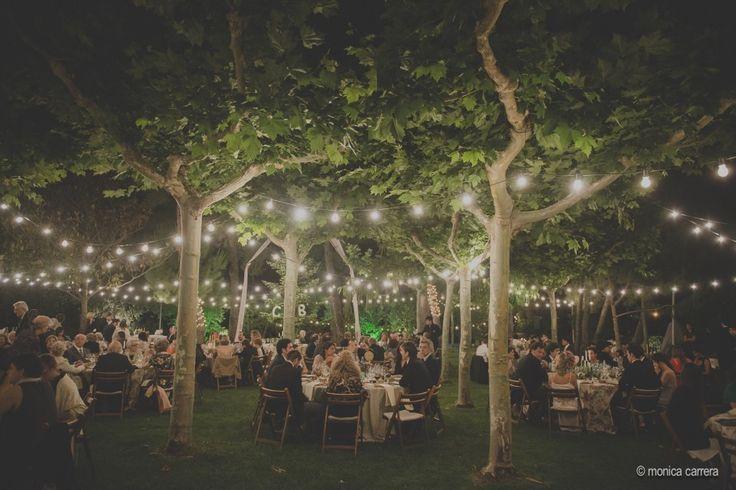 Una boda elegante.   Fotografo de boda monica carrera/ iluminacion para boda aire libre / bombillas de bervena