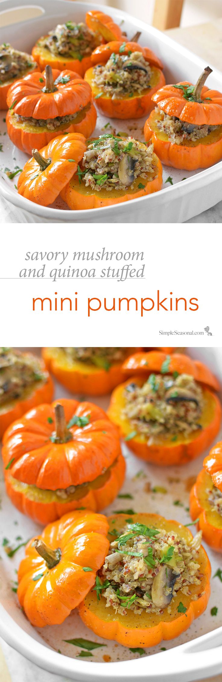 Savory Mushroom and Quinoa Stuffed Mini Pumpkins – Easy to make and deliciously sweet and savory, these ADORABLE little stuffed pumpkins will be the hit of your next fall gathering! | SimpleSeasonal.com