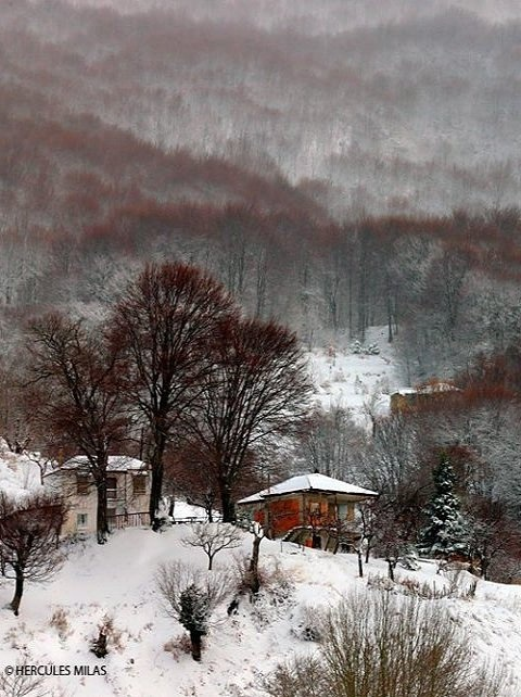 Pelion mountain, Magnisia, Greece / photo by Hercules Milas