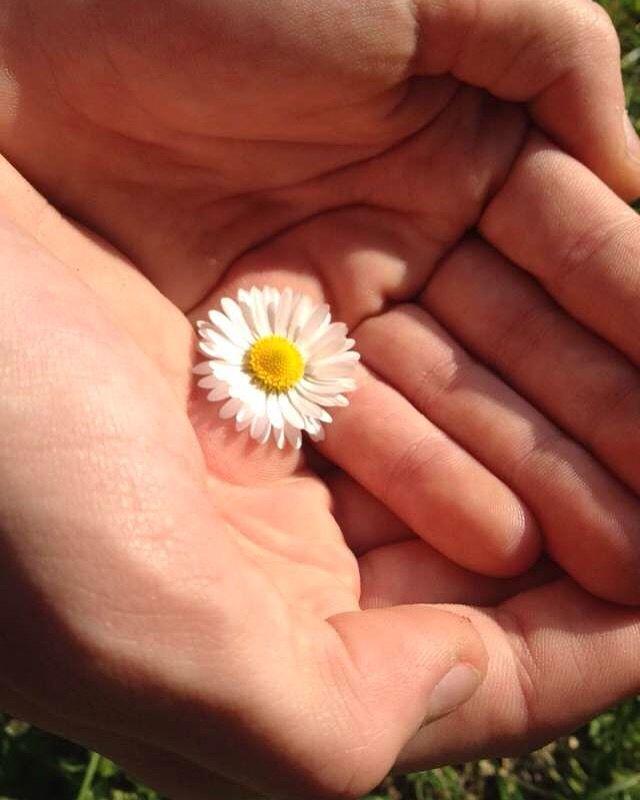Friend=my flower