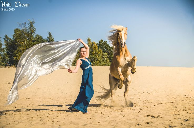 What we find in a soulmate is not something wild to tame, but something wild to run with.  - clickertraining, tricktraining, horse tricks, fantasy, horse training, horse quotes, photography -