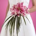 Beautiful pink lilies for a wedding bouquet!!