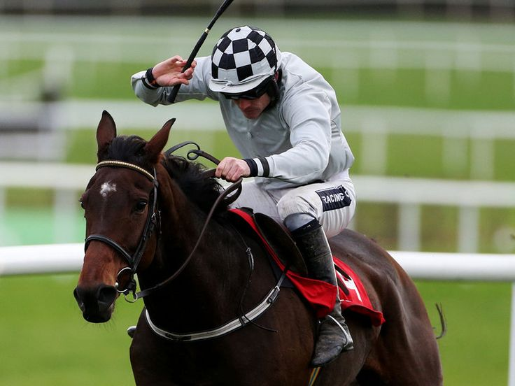 Tendon injury for Morning Assembly  https://www.racingvalue.com/tendon-injury-for-morning-assembly/