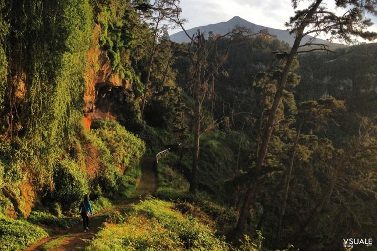 Barranco Ruiz, un sendero bajo el Teide IV