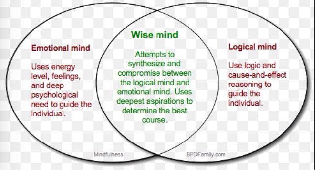 Emotional Vs Logical Mind How To Learn And Stay In Wise