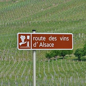 De Elzas wijnroute