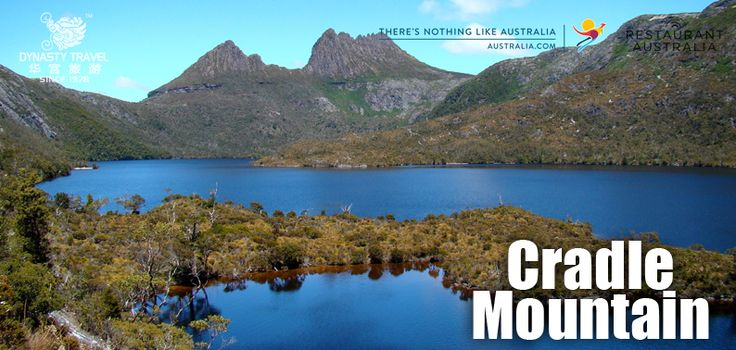 Cradle Mountain is part of the Tasmanian Wilderness World Heritage Area and one of the most accessible, interesting and most visited places in Tasmania.  Located at the northern end of the Cradle Mountain - Lake St Clair National Park, Cradle Mountain is surrounded by smooth glacial lakes, ancient rainforest, and unusual alpine vegetation.  It's easy to gain a full appreciation of the place on one of the many short walks found in the area.  You can stroll from cascading rivers to dense…