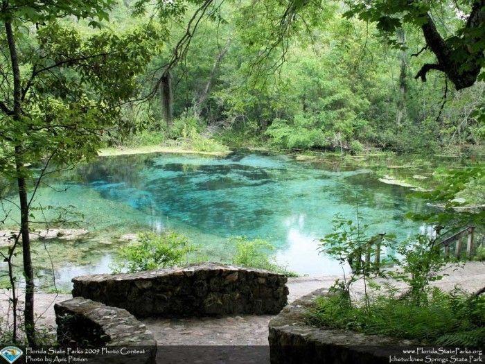 Best 25 Tallahassee Florida Ideas On Pinterest Tampa