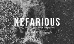 Vocabulary. Nefarious is from the the Latin. The ultimate origin is from two Latin words. Ne meaning not, and fas meaning divine law. Meaning not divine law in Latin. The word entered English in the early 17th century. The above definition in the box is good for English.