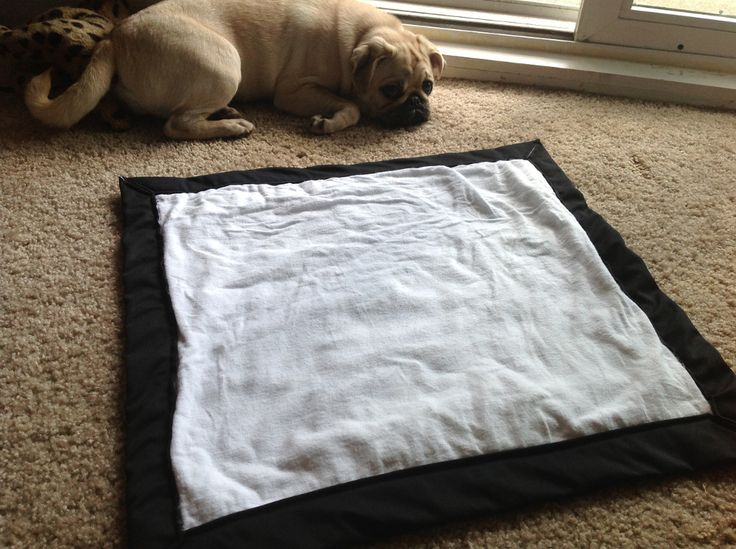 HowTo: DIY Reusable Potty Pads-probably easier than washing sheets every day? Also keep for future puppy:)