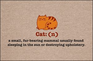 Cat: (n)