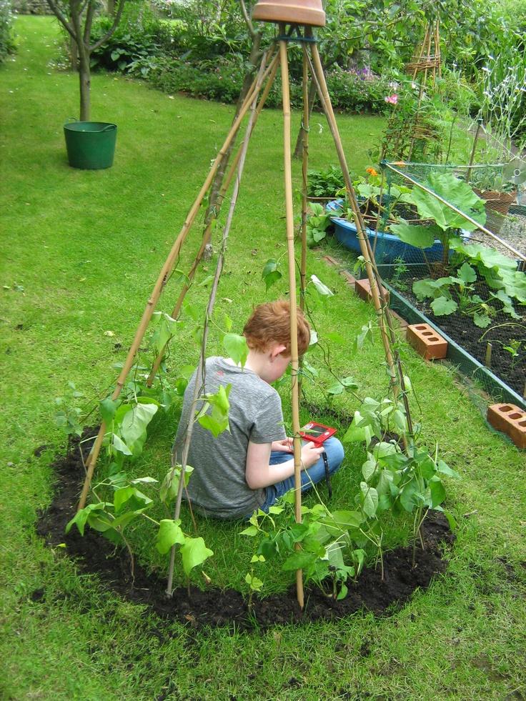 Bet Miss Kal Would Love This! Start Of A Bean Wigwam... Garden KidsGarden  Ideas ChildrenGarden PlannerGarden ProjectsSchool ...