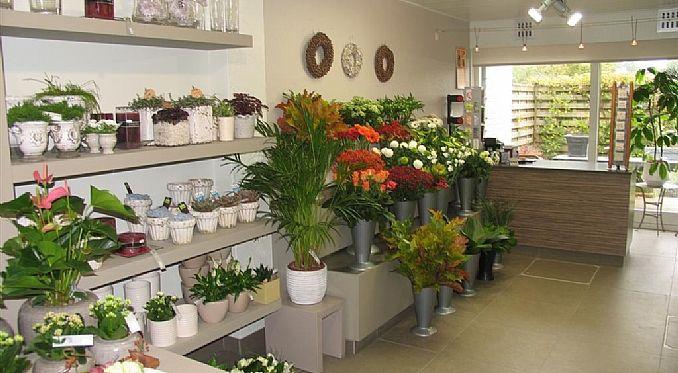 bloemenwinkel interieur - Google zoeken