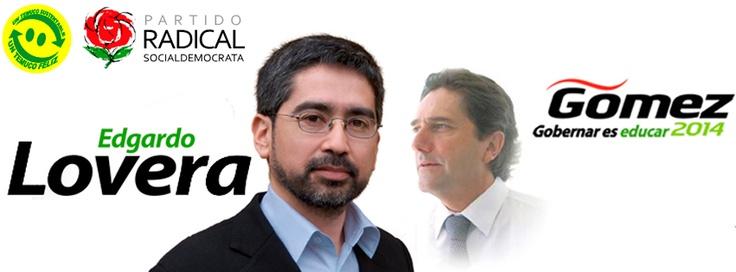 Primarias presidenciales y parlamentarias 2013