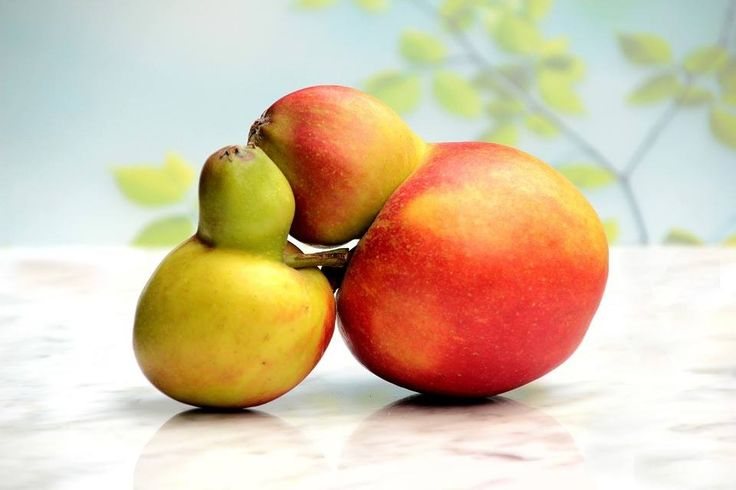 That's only two apples | Inspirowani Naturą