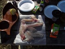 Fresh Snapper Sashimi on camping trip