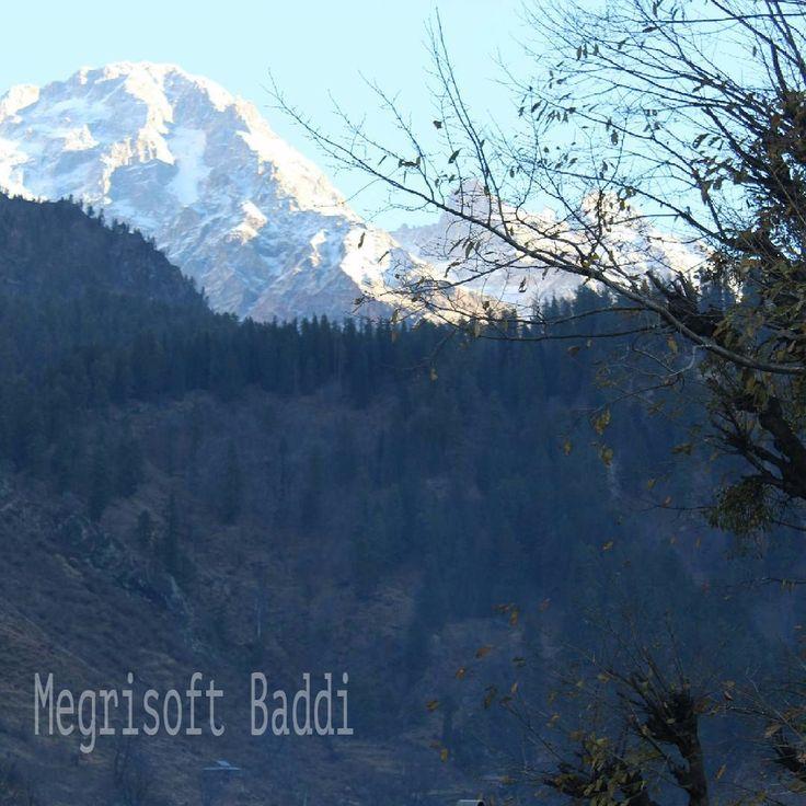 #india #travel #mountains #nature #himachalpradesh #himalayas #instahimachal #incredibleindia #traveller #photooftheday #solan #baddi #hp #roadtrip #landscape #travelphotography #instagood #beautiful #himachalpictures #traveldiaries #travelgram #hills #peace #photographer @megrisoftbaddi #megrisoft
