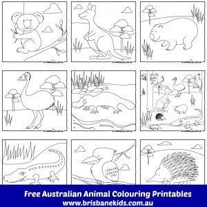 Australian Animals Colouring Pages - Brisbane Kids #australia #australiaday #freedownload