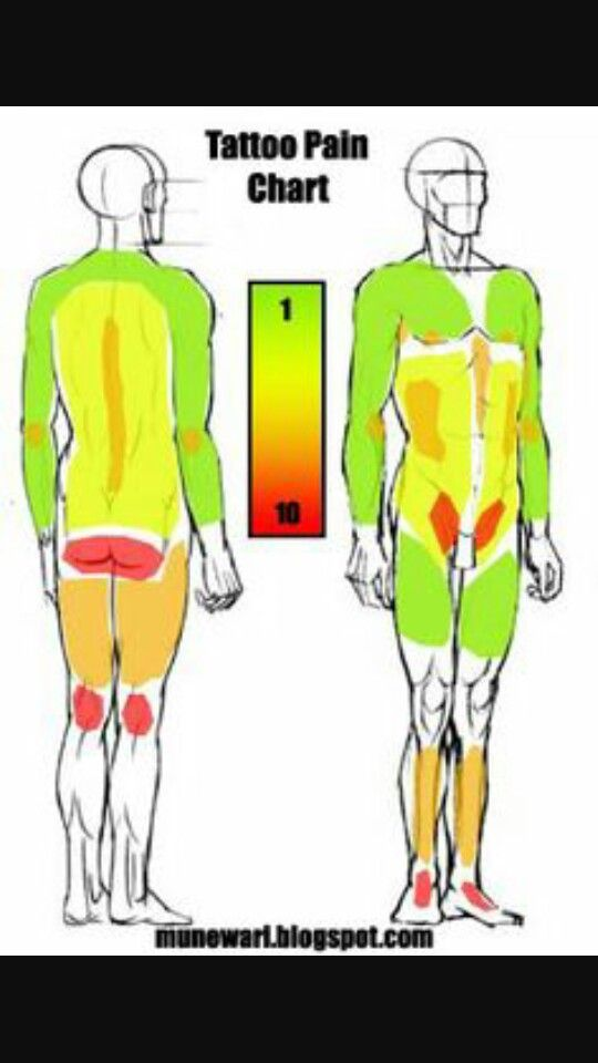 Tattoo pain chart one of the many ive seen tattoos for Description of tattoo pain