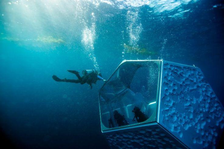 Arte+subacquea.+I+padiglioni+di+Doug+Aitken+in+fondo+all'oceano