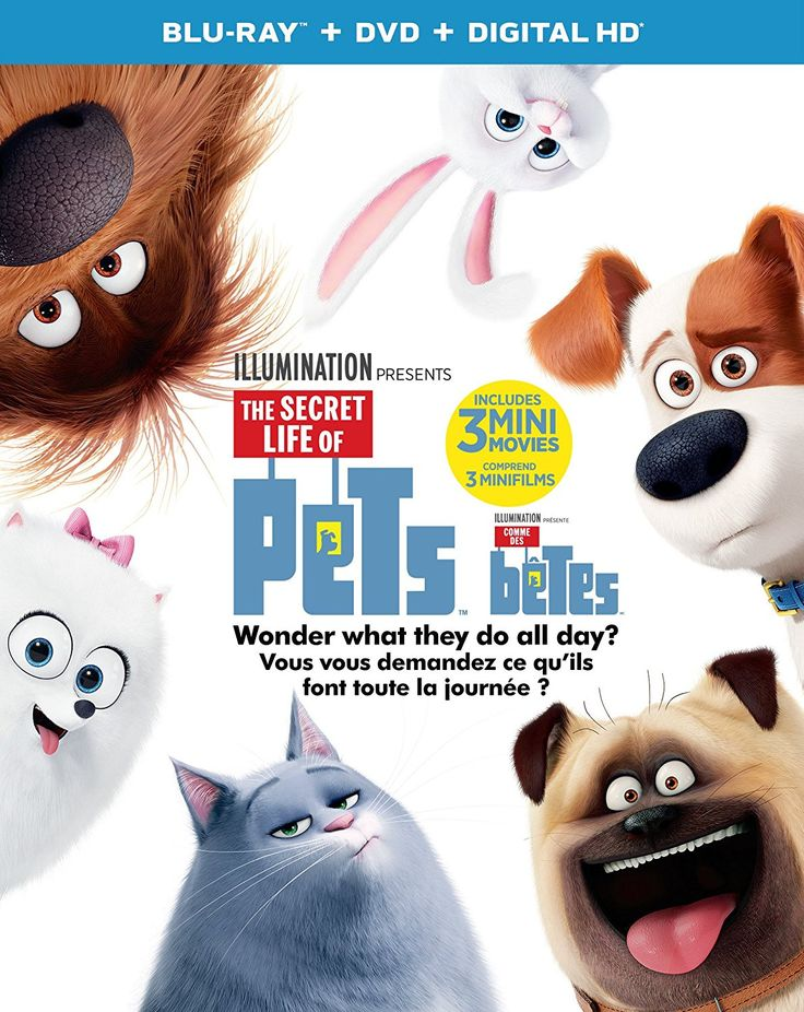 The Secret Life of Pets (2016) ... A Jack Russell Terrier named Max (Louis C.K.) lives with his owner Katie (Ellie Kemper) in a Manhattan apartment. While she is at work during the day, he hangs out with other pets in the building: tabby cat Chloe (Lake Bell), pug Mel (Bobby Moynihan), dachshund Buddy (Hannibal Buress), and budgerigar Sweetpea. One day, Katie adopts Duke, a large mongrel from the pound, leaving Max jealous because of her divided focus on Duke. (04-Mar-2017)