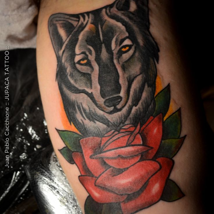 Juan Pablo Cacchione :: jupaca tattoo :: lobo tradi tatuaje :: wolf tattoo neotradi