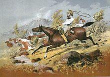 Stockman (Australia) - Wikipedia, the free encyclopedia