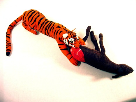 Animal eating animal