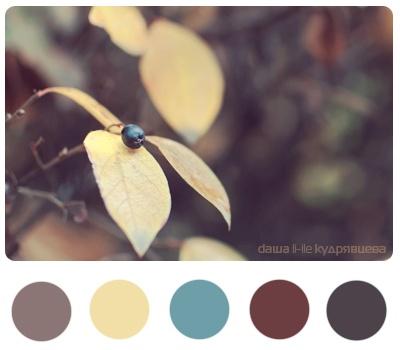 fallMaine Colors, Autumn Winte Colors, Color Palettes, Bathroom Colors, Color Schemes, Colors Palettes, Colors Schemes, Anchors Colors
