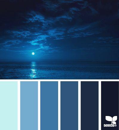 Harmonie bleu nuit  I Design I Couleur I Inspiration I Camaïeu I Peinture I