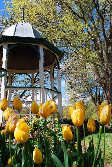 Spring at Corbett Gardens, Bowral, Australia