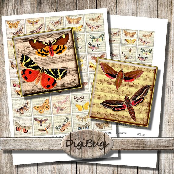 Butterflies Moths on Music Paper Background, Digital Collage Sheet, 38 mm & 32 mm Squares, Butterfly Magnet Images, Printable Download, a5