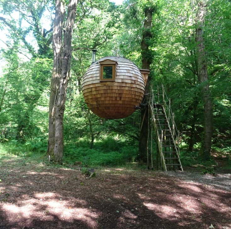 Tree-mendous: a weekend in the coolest treehouse in Cornwall, England. (Where you can live like an Ewok for a few days!)