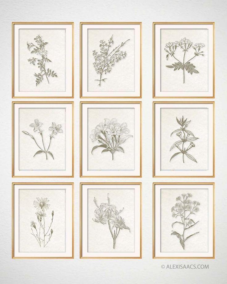 Vintage Botanical Prints Set Of 9 Framed Botanical Prints Farmhouse Wall Art Vintage Botanical Prints