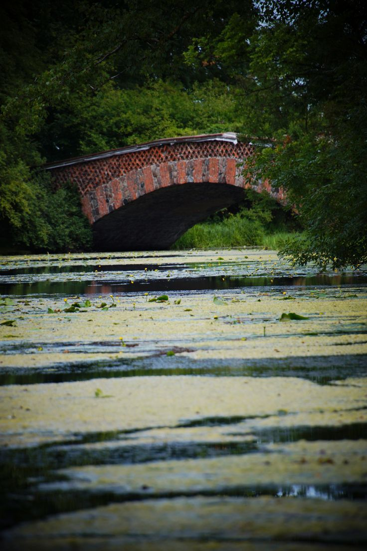 Wilanów bridge