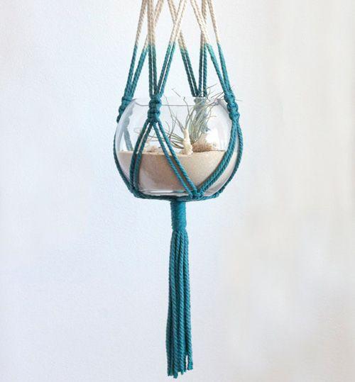 Macrame hanging terrarium.