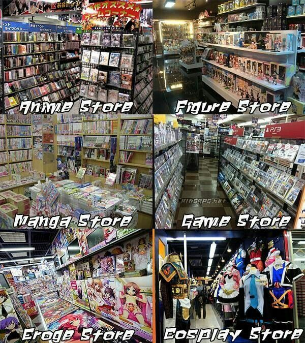Anime store, figure store, manga store, game store, eroge store, cosplay store, text; Otaku